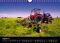 Arcadian Dreams Revisited Traditional farmers of Holland 2019 (Wall Calendar 2019 DIN A4 Landscape) - Produktdetailbild 8
