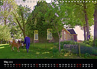 Arcadian Dreams Revisited Traditional farmers of Holland 2019 (Wall Calendar 2019 DIN A4 Landscape) - Produktdetailbild 5
