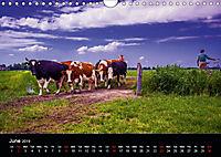 Arcadian Dreams Revisited Traditional farmers of Holland 2019 (Wall Calendar 2019 DIN A4 Landscape) - Produktdetailbild 6
