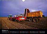 Arcadian Dreams Revisited Traditional farmers of Holland 2019 (Wall Calendar 2019 DIN A4 Landscape) - Produktdetailbild 10
