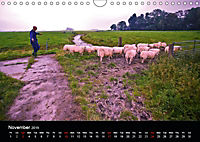 Arcadian Dreams Revisited Traditional farmers of Holland 2019 (Wall Calendar 2019 DIN A4 Landscape) - Produktdetailbild 11
