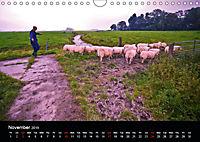 Arcadian Dreams Revisited Traditional farmers of Holland 2019 (Wall Calendar 2019 DIN A4 Landscape) - Produktdetailbild 11