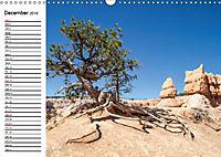 ARIZONA AND UTAH An Unforgettable Experience (Wall Calendar 2019 DIN A3 Landscape) - Produktdetailbild 12