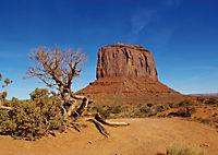 Arizona! / UK-Version (Poster Book DIN A3 Landscape) - Produktdetailbild 4