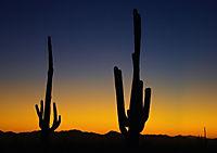 Arizona! / UK-Version (Stand-Up Mini Poster DIN A5 Landscape) - Produktdetailbild 8