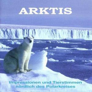 Arktis, Tierstimmen Am Polarkreis