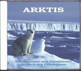 Arktis, 1 Audio-CD, Tierstimmen, Naturgeräusche