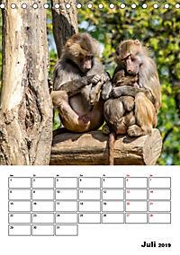 Artenvielfalt Tiere (Tischkalender 2019 DIN A5 hoch) - Produktdetailbild 7