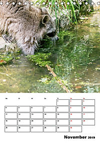 Artenvielfalt Tiere (Tischkalender 2019 DIN A5 hoch) - Produktdetailbild 11