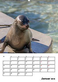 Artenvielfalt Tiere (Wandkalender 2019 DIN A2 hoch) - Produktdetailbild 1