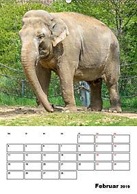 Artenvielfalt Tiere (Wandkalender 2019 DIN A2 hoch) - Produktdetailbild 2