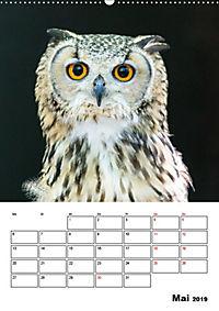 Artenvielfalt Tiere (Wandkalender 2019 DIN A2 hoch) - Produktdetailbild 5