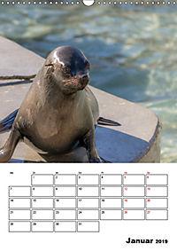Artenvielfalt Tiere (Wandkalender 2019 DIN A3 hoch) - Produktdetailbild 1