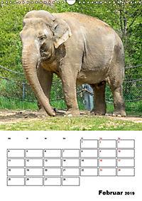 Artenvielfalt Tiere (Wandkalender 2019 DIN A3 hoch) - Produktdetailbild 2