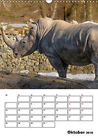 Artenvielfalt Tiere (Wandkalender 2019 DIN A3 hoch) - Produktdetailbild 10