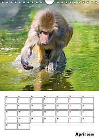 Artenvielfalt Tiere (Wandkalender 2019 DIN A4 hoch) - Produktdetailbild 4