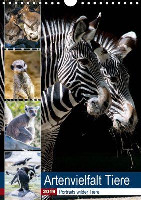 Artenvielfalt Tiere (Wandkalender 2019 DIN A4 hoch), Karin Sigwarth