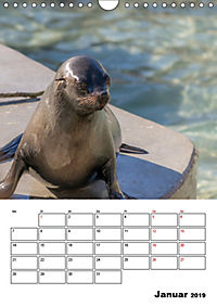 Artenvielfalt Tiere (Wandkalender 2019 DIN A4 hoch) - Produktdetailbild 1