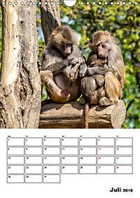 Artenvielfalt Tiere (Wandkalender 2019 DIN A4 hoch) - Produktdetailbild 7