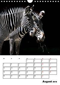 Artenvielfalt Tiere (Wandkalender 2019 DIN A4 hoch) - Produktdetailbild 8