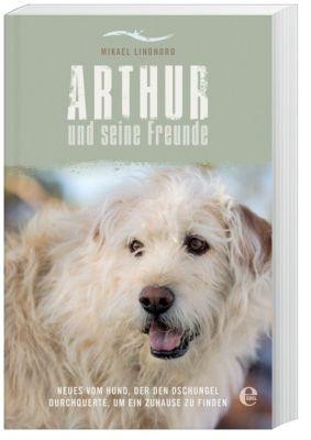 Arthur und seine Freunde, Mikael Lindnord