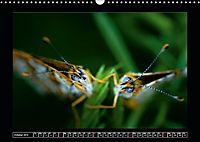 As high as ants (Wall Calendar 2019 DIN A3 Landscape) - Produktdetailbild 10