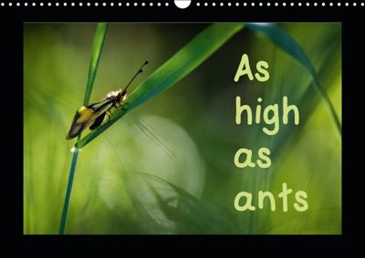 As high as ants (Wall Calendar 2019 DIN A3 Landscape), Guilhem Manzano