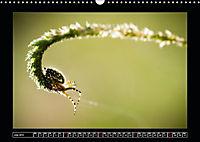As high as ants (Wall Calendar 2019 DIN A3 Landscape) - Produktdetailbild 7