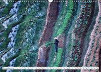Asia's Pearl Vietnam (Wall Calendar 2019 DIN A3 Landscape) - Produktdetailbild 11