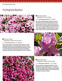 Asiatische Gärten gestalten - Produktdetailbild 7