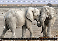 Asiatische und afrikanische Elefanten (Tischkalender 2019 DIN A5 quer) - Produktdetailbild 4