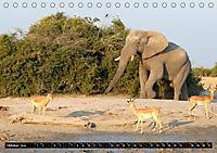 Asiatische und afrikanische Elefanten (Tischkalender 2019 DIN A5 quer) - Produktdetailbild 10