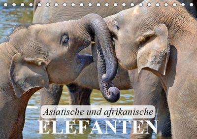Asiatische und afrikanische Elefanten (Tischkalender 2019 DIN A5 quer), Elisabeth Stanzer