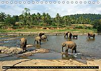 Asiatische und afrikanische Elefanten (Tischkalender 2019 DIN A5 quer) - Produktdetailbild 3