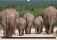 Asiatische und afrikanische Elefanten (Wandkalender 2019 DIN A3 quer) - Produktdetailbild 8