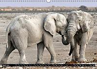 Asiatische und afrikanische Elefanten (Wandkalender 2019 DIN A3 quer) - Produktdetailbild 4