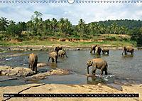 Asiatische und afrikanische Elefanten (Wandkalender 2019 DIN A3 quer) - Produktdetailbild 3