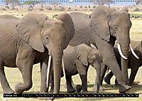 Asiatische und afrikanische Elefanten (Wandkalender 2019 DIN A2 quer) - Produktdetailbild 2