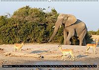 Asiatische und afrikanische Elefanten (Wandkalender 2019 DIN A2 quer) - Produktdetailbild 10