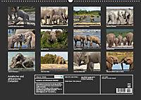 Asiatische und afrikanische Elefanten (Wandkalender 2019 DIN A2 quer) - Produktdetailbild 13