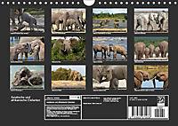 Asiatische und afrikanische Elefanten (Wandkalender 2019 DIN A4 quer) - Produktdetailbild 13