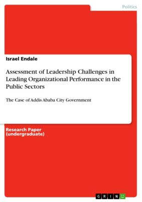 Assessment of Leadership Challenges in Leading Organizational Performance in the Public Sectors, Israel Endale