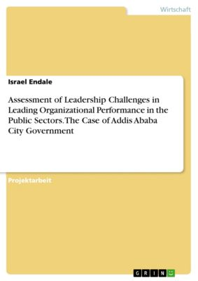 Assessment of Leadership Challenges in Leading Organizational Performance in the Public Sectors. The Case of Addis Ababa City Government, Israel Endale