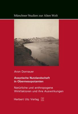 Assyrische Nutzlandschaft in Obermesopotamien, Aron Dornauer