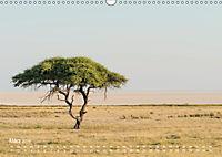 Astrein! - Der Baumkalender 2019 (Wandkalender 2019 DIN A3 quer) - Produktdetailbild 3