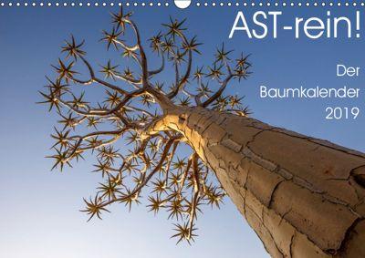 Astrein! - Der Baumkalender 2019 (Wandkalender 2019 DIN A3 quer), Irma van der Wiel