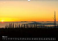 Astrein! - Der Baumkalender 2019 (Wandkalender 2019 DIN A3 quer) - Produktdetailbild 5