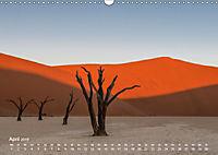 Astrein! - Der Baumkalender 2019 (Wandkalender 2019 DIN A3 quer) - Produktdetailbild 4