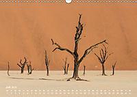 Astrein! - Der Baumkalender 2019 (Wandkalender 2019 DIN A3 quer) - Produktdetailbild 7