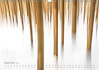 Astrein! - Der Baumkalender 2019 (Wandkalender 2019 DIN A3 quer) - Produktdetailbild 12